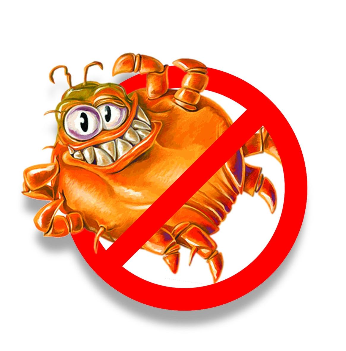 Prevenire meglio che disinfestare hotel domani - Cimici da letto cause ...