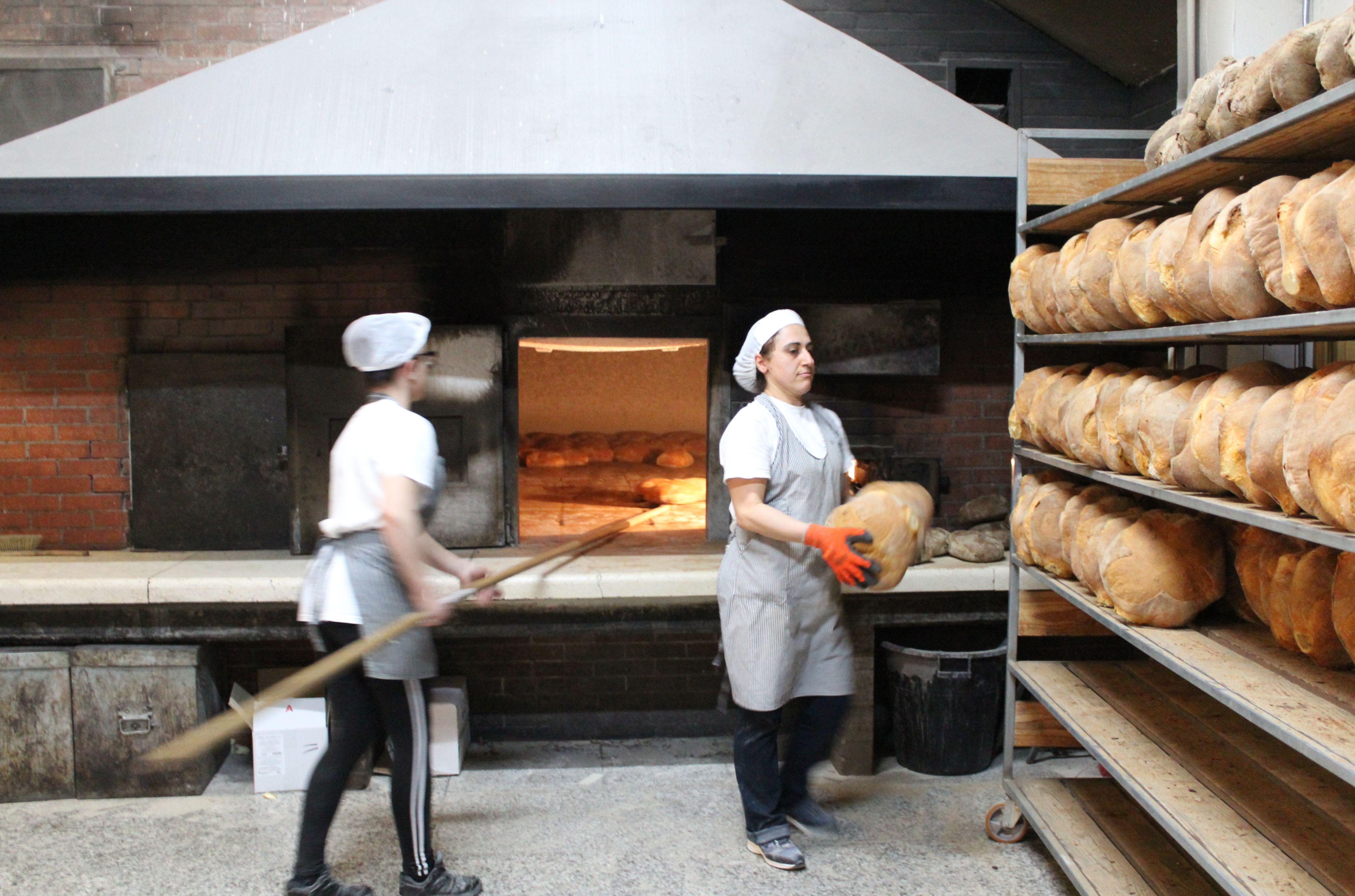La cottura nel forno a legna del pane tipico di Laterza al Panificio Di Fonzo