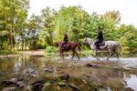 Un uomo e una donna a cavallo nel Casentino