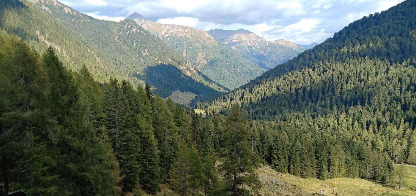 L'Italia è disseminata di parchi, nella foto la zona del Lagorai, in Trentino